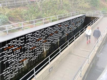 Ballard Locks Fish Ladder Renovation - Discover Your Northwest